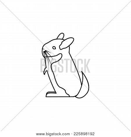 450x470 Chinchilla Images, Illustrations, Vectors