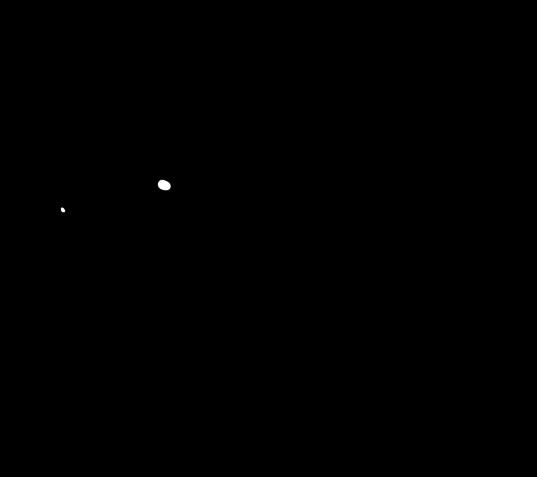 537x477 Free Use Chinchilla() Lineart By Prepawsterous
