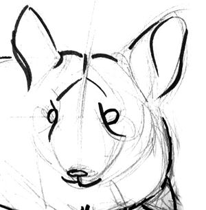 300x306 How To Draw A Chinchilla