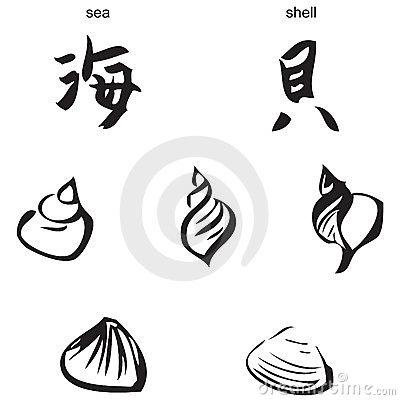 400x400 Sea, Shells