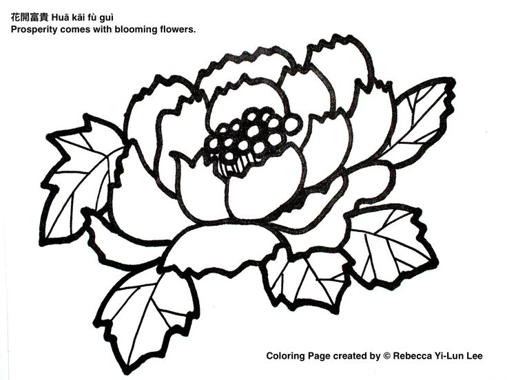 chinese cherry blossom drawing at getdrawings com free for