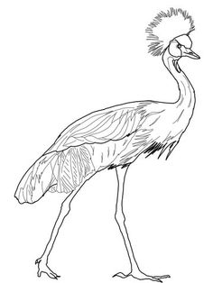 236x314 Crane Island Comforts Coloring Pages Islands