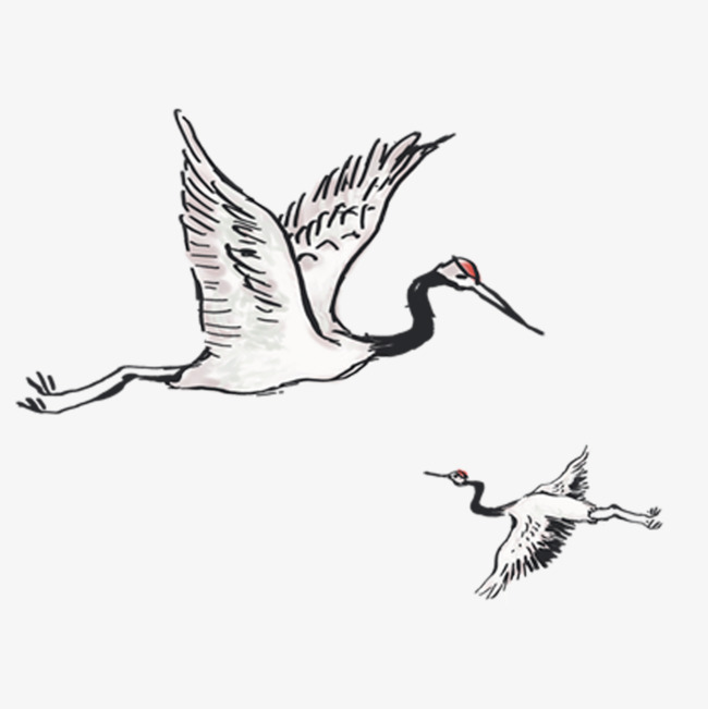650x651 Free Flying Red Crowned Crane To Pull The Mother Material, Red