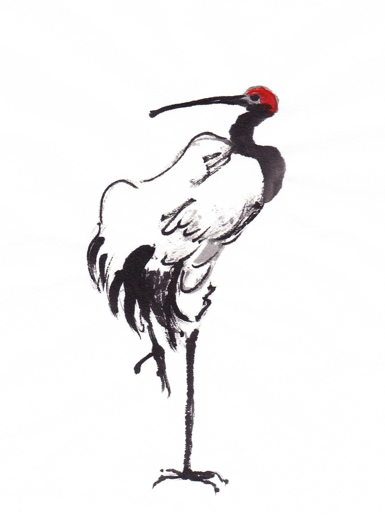1587x2171 On The Trail Of The Red Crowned Crane Followmybrushmarks
