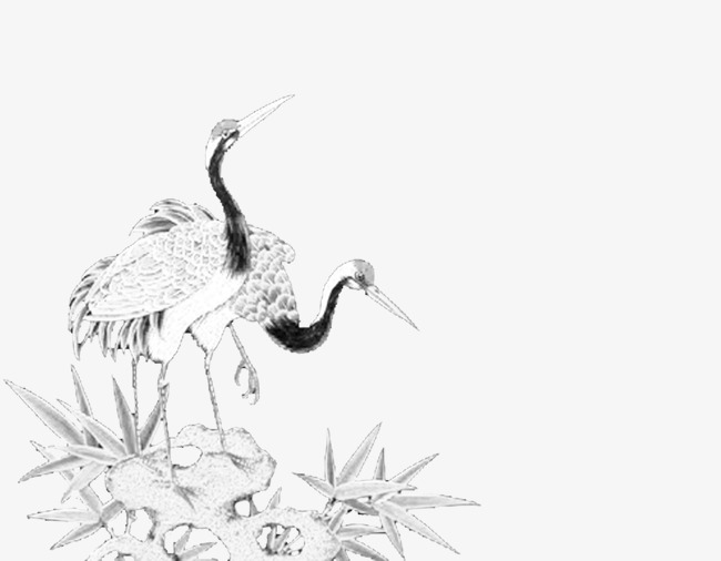 650x506 Red Crowned Crane, Crane, Ink Png Image For Free Download