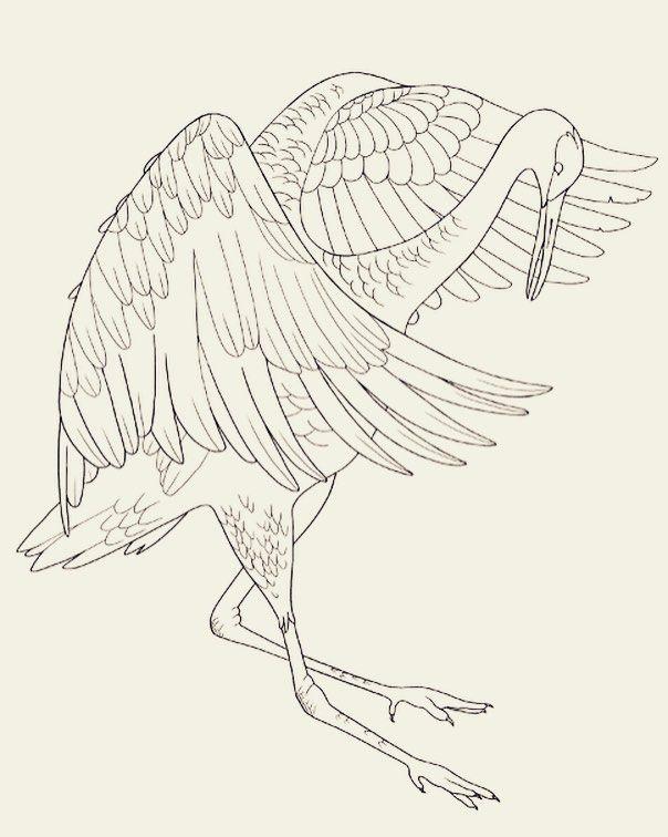 604x756 28 Best Art Images On Crane Tattoo, Tattoo Ideas And Bird