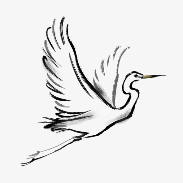 591x591 White Crane, Ink, White Png Image For Free Download