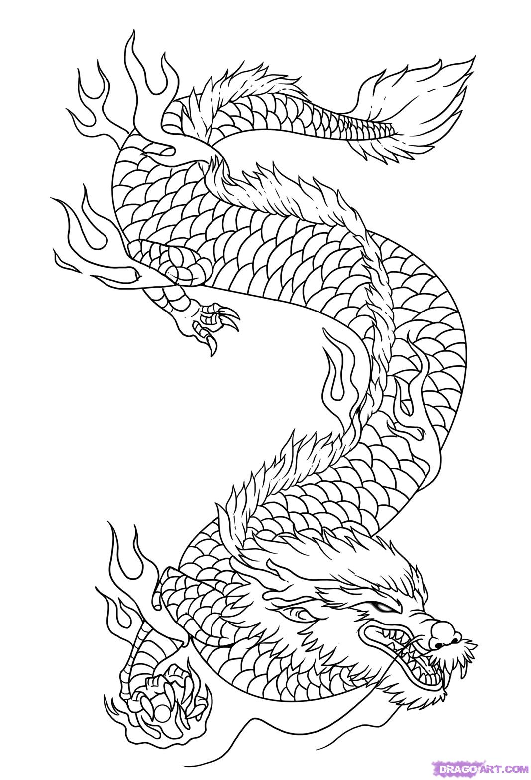 1067x1565 How To Draw A Chinese Dragon Head