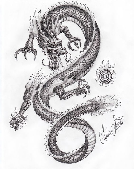 564x708 Asian Dragon Drawings Chinese Dragon Drawings In Pencil