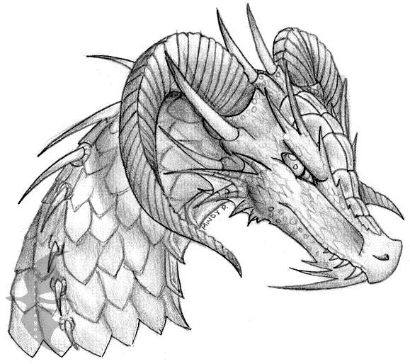 Chinese Dragon Face Drawing