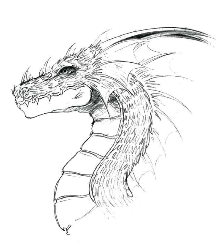 Chinese Dragon Face Drawing at GetDrawings.com | Free for ...