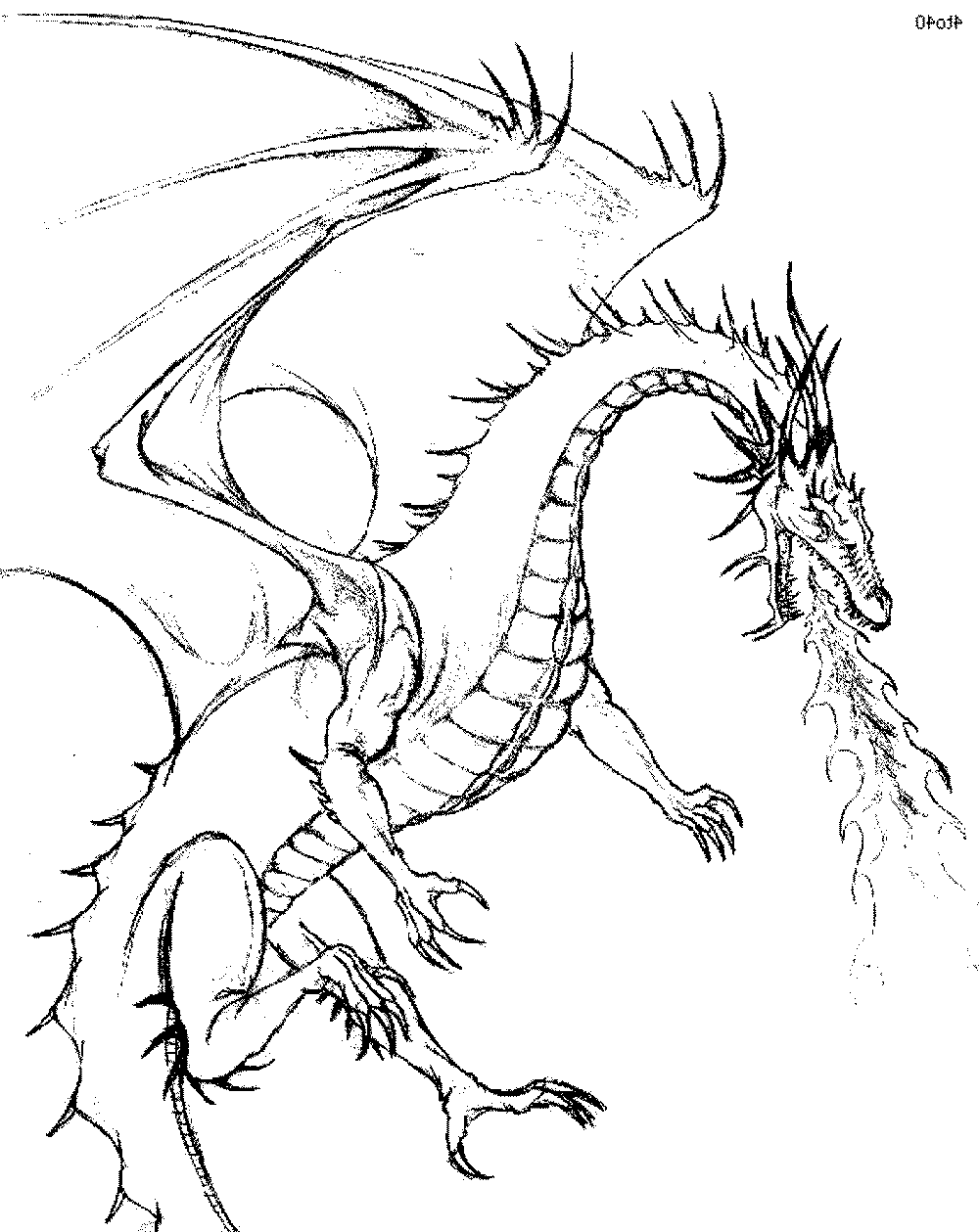 chinese dragon line drawing at getdrawings  free download