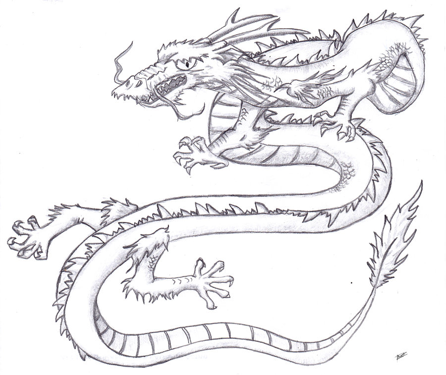 900x757 Chinese dragon by Palo P on DeviantArt