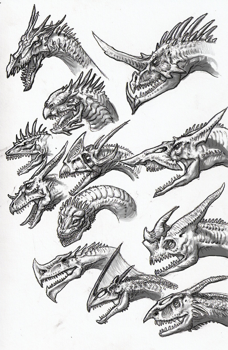 800x1224 Evil Dragon Sketches In Pencil Chinese Dragon Pencil By