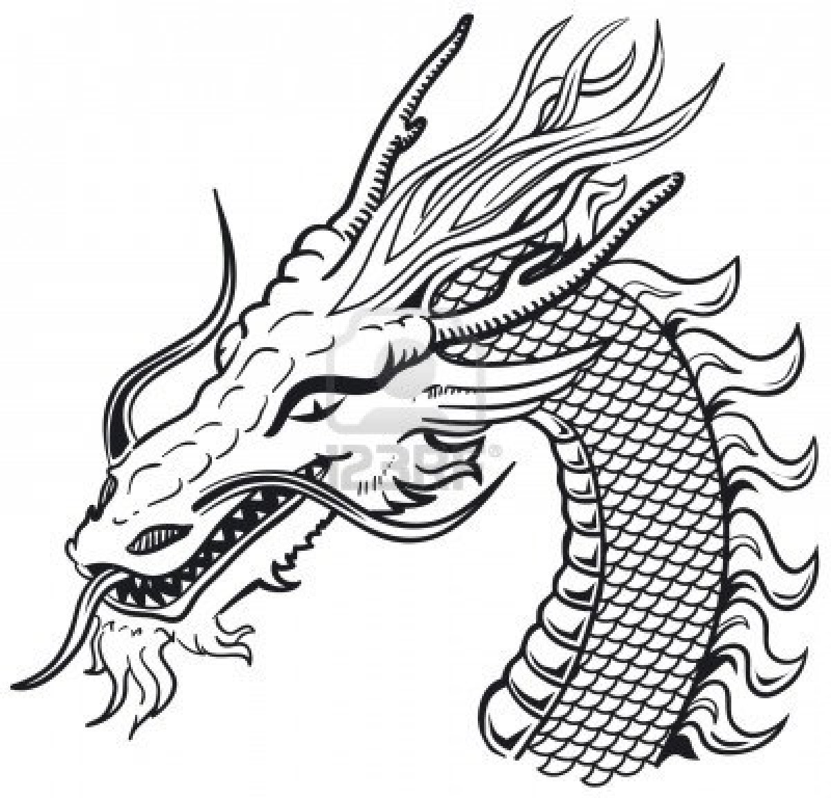 1200x1152 how to draw dragons skin Archives