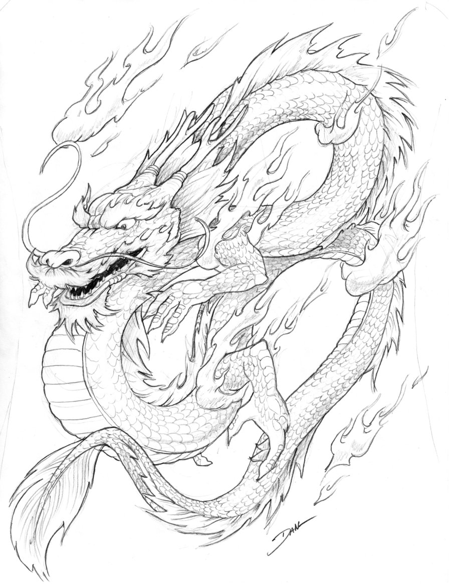 900x1165 Chinese Dragon by dflogan on DeviantArt