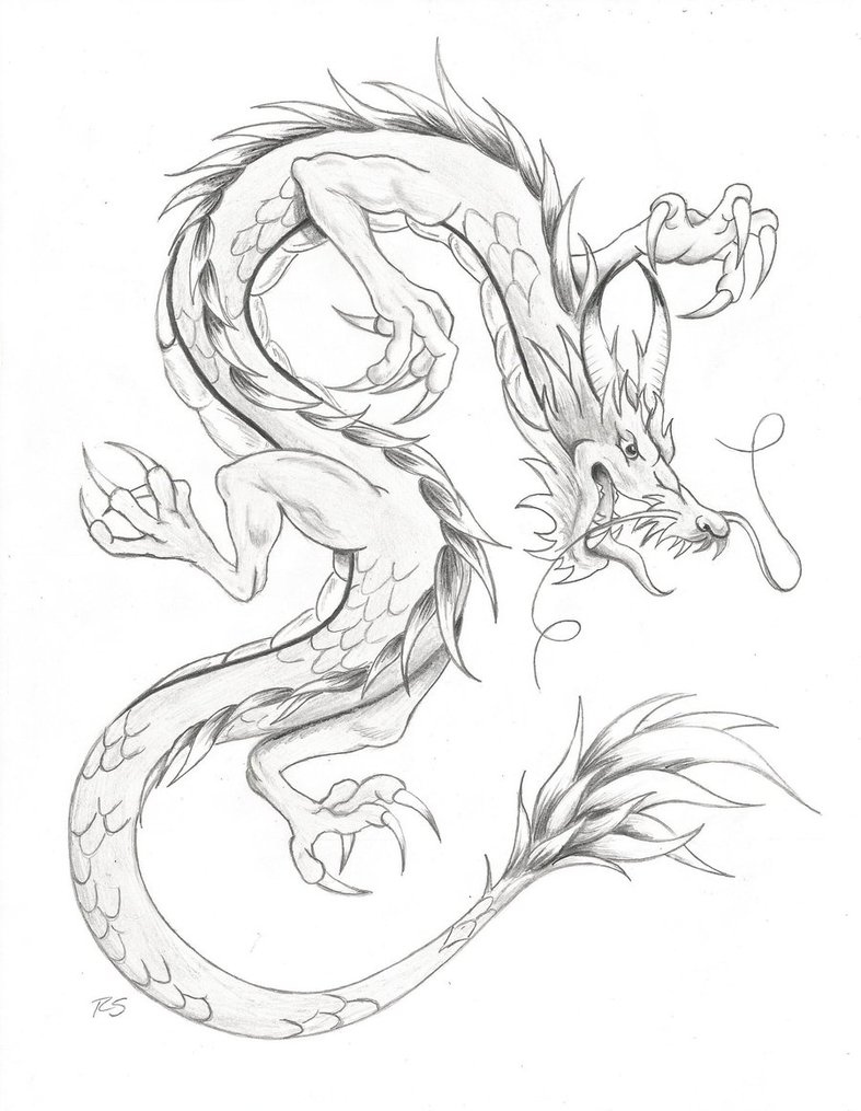 787x1015 Chinese Dragon by rshaw87 on DeviantArt
