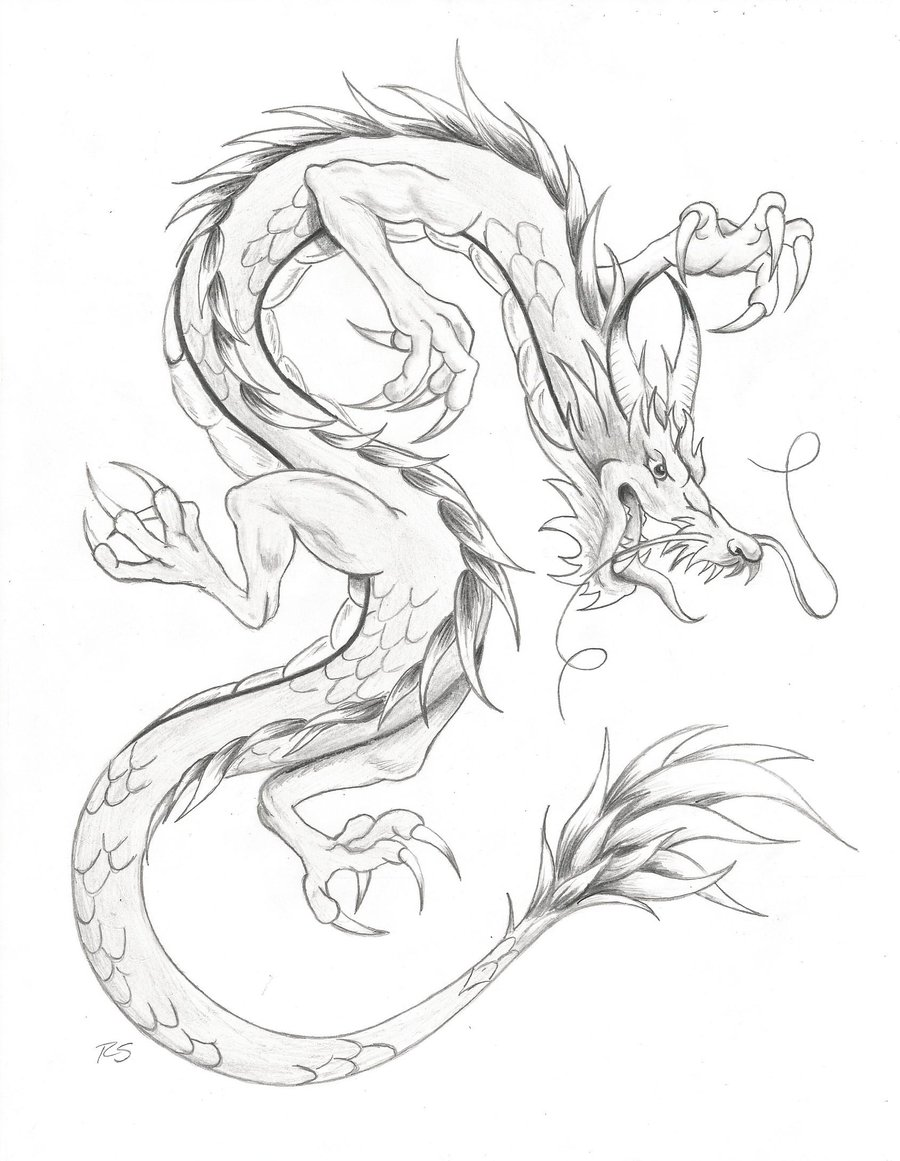 900x1161 Chinese Dragons Drawings