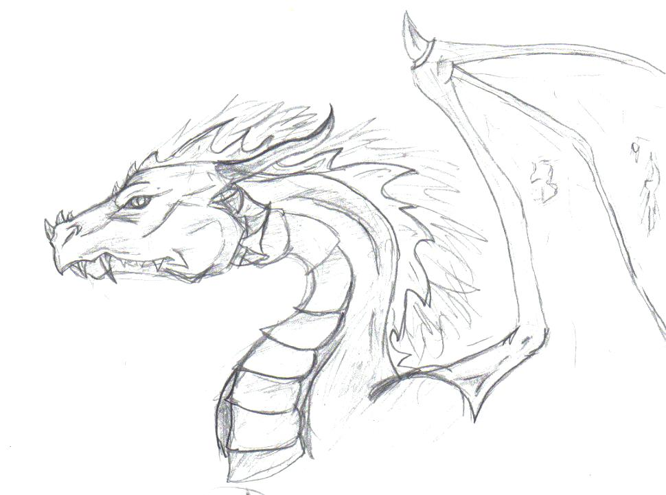 970x721 Dragon Head Coloring Page Printable Dragon Head Coloring Pages