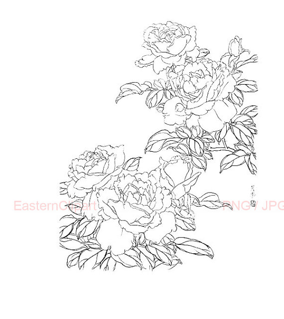 Chinese Flower Line Drawing : Chinese drawing book at getdrawings free for