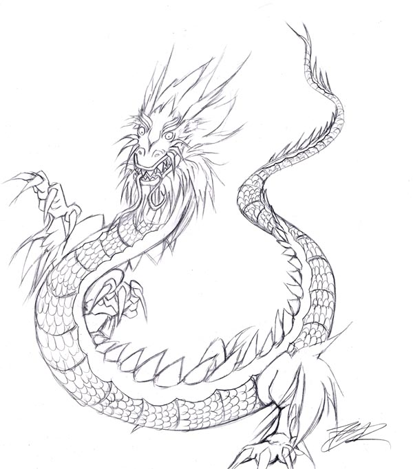 600x682 Chinese Dragon Sketch By Akudou