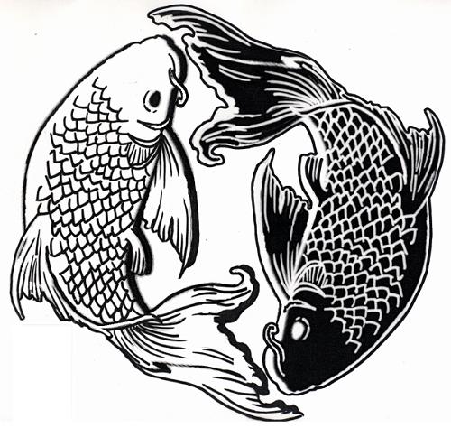 Chinese Fish Drawing