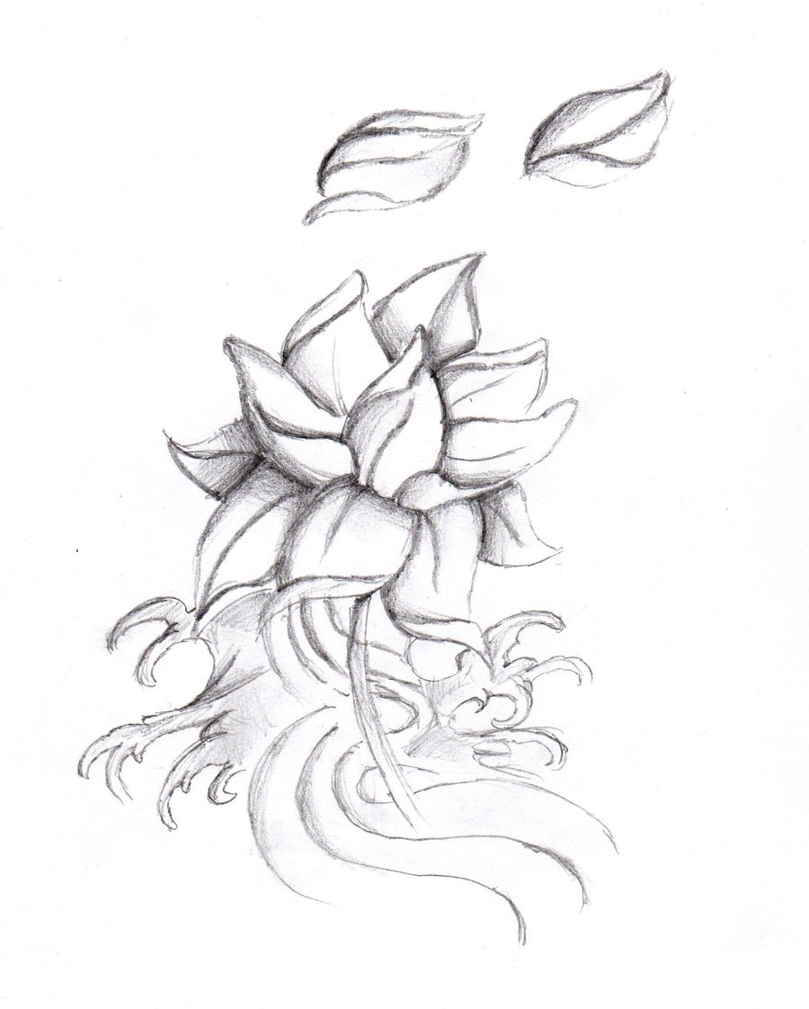 Chinese flower drawing at getdrawings free for personal use 900x1122 lotus flower by feeohnah on deviantart izmirmasajfo