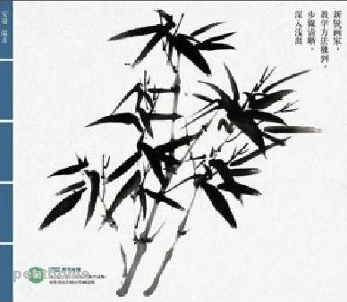 388x338 Chinese Writing Brush Painting Bamboo Book Detailed Study Painting
