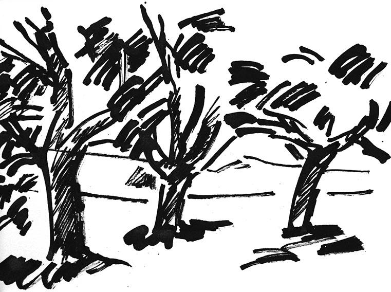 761x568 Landscapes