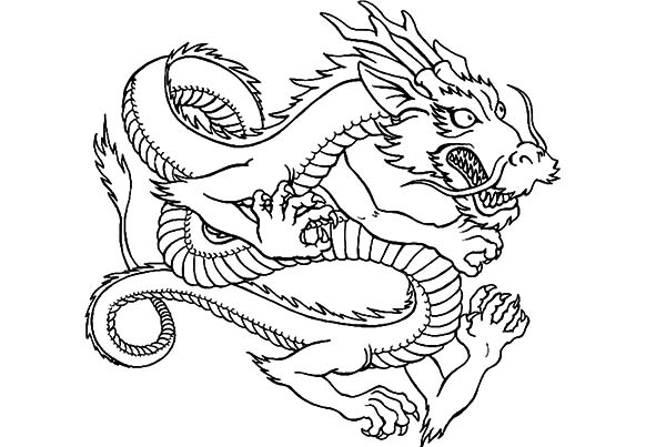 Chinese Lion Head Drawing_