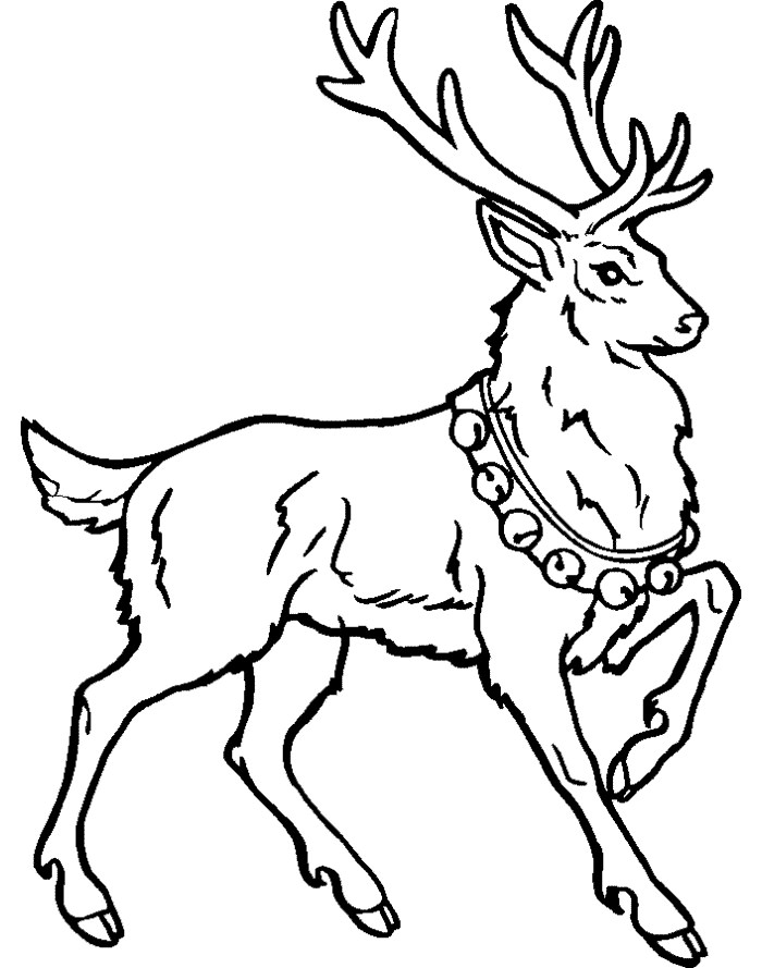 Christmas Animal Drawing At Getdrawings Com Free For Personal Use