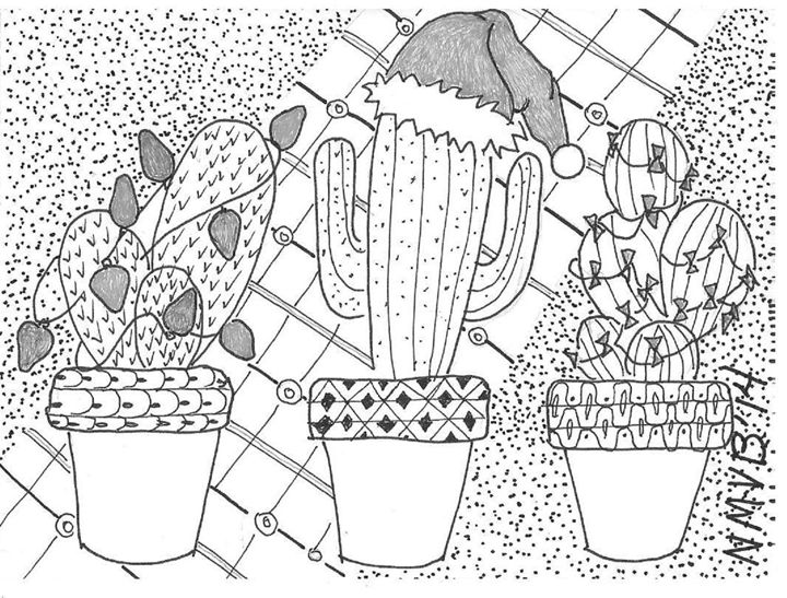 Christmas Cactus Drawing