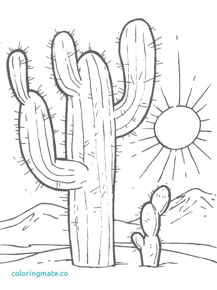 750x1000 Cactus Coloring Saguaro Cactus Coloring On Drawn Cactus Om Pencil