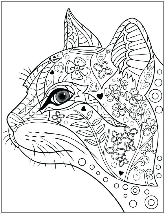 570x738 Coloring Pattern Pages Cat Stress Relieving Designs Patterns Adult