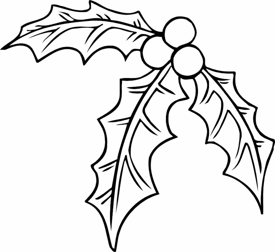 900x824 Coloring Pages Mistletoe, Printable For Kids Amp Adults, Free