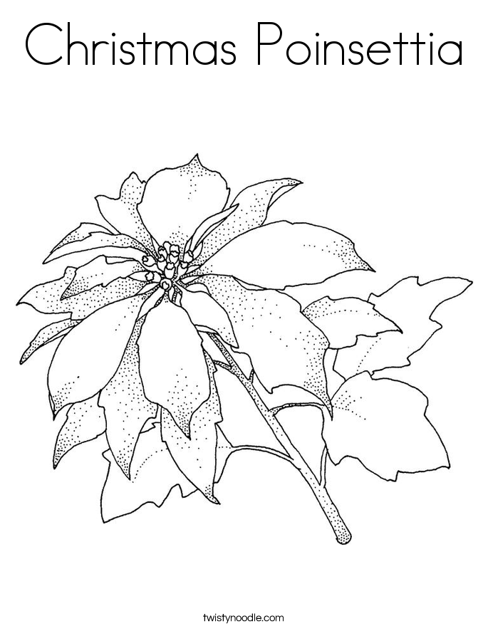 685x886 Christmas Poinsettia Coloring Page