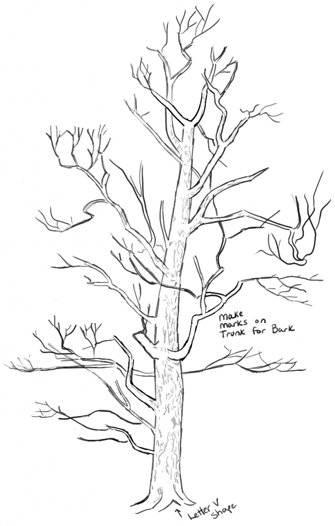 654x1024 How To Draw A Tree Step By Step How To Draw Trees Drawing