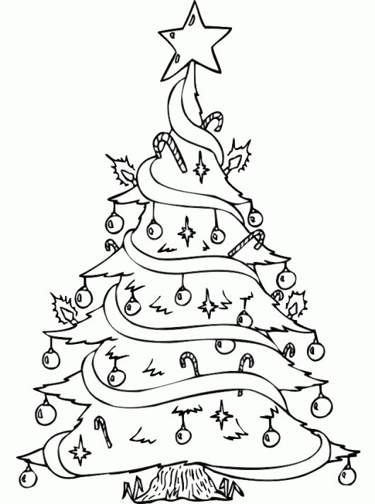 530x712 16 Best Tree Coloring Page Images On Xmas Trees