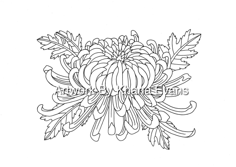 Chrysanthemum Flower Drawing at GetDrawings.com | Free for personal ...