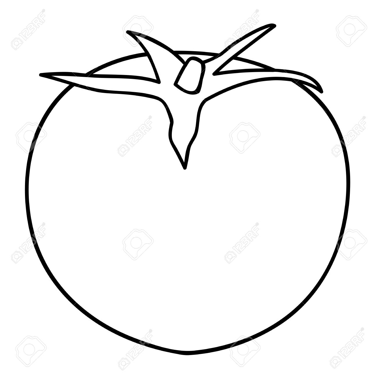 1300x1300 Sketch Line Drawing Of Tomato Isolated Illustration On White