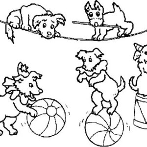 300x300 Drawing Circus Shows Coloring Page Drawing Circus Shows Coloring