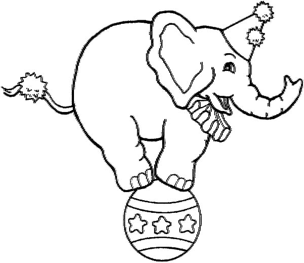 600x519 Picture Of Circus Elephant Coloring Pages Picture Of Circus