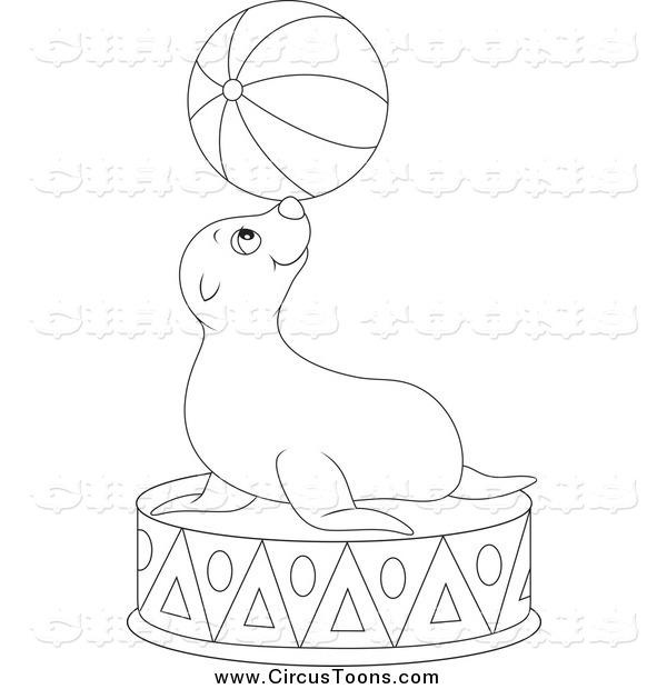 600x620 Circus Clipart Of A Black And White Cute Sea Lion Balancing A Ball