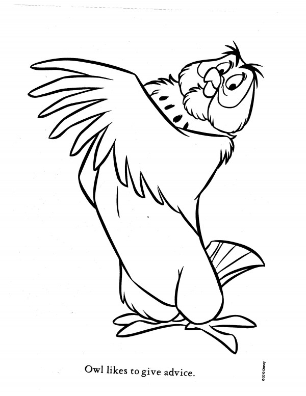 600x777 Owl Coloring Pages