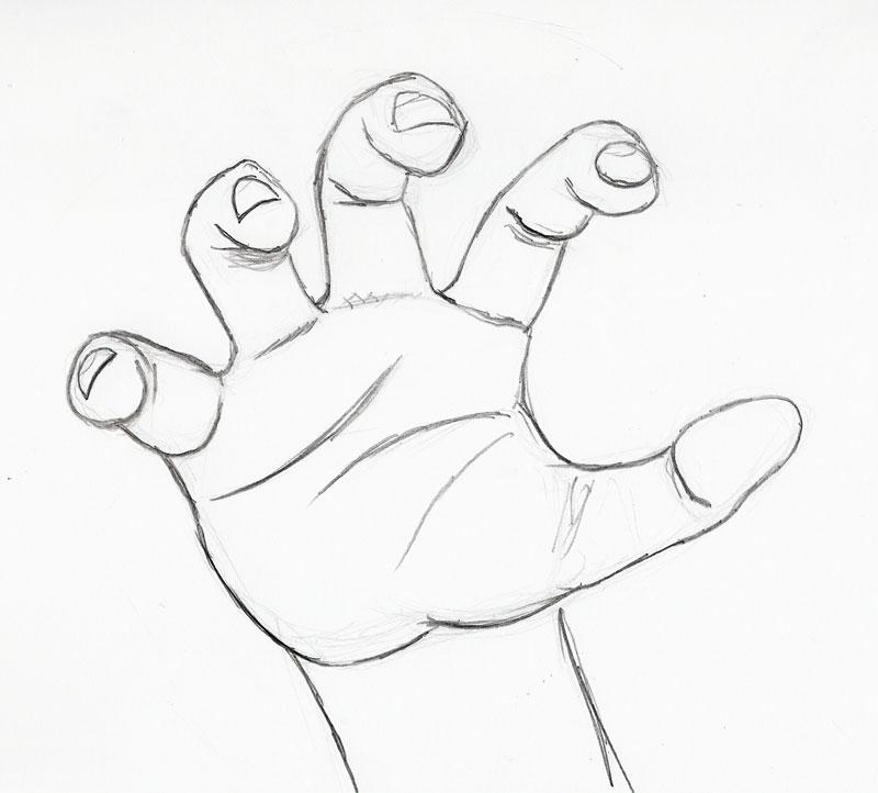 800x722 Sketch