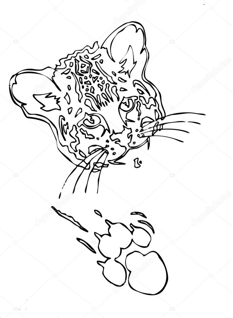751x1023 Leopard Face With Paw And Claw Mark Outline Stock Vector