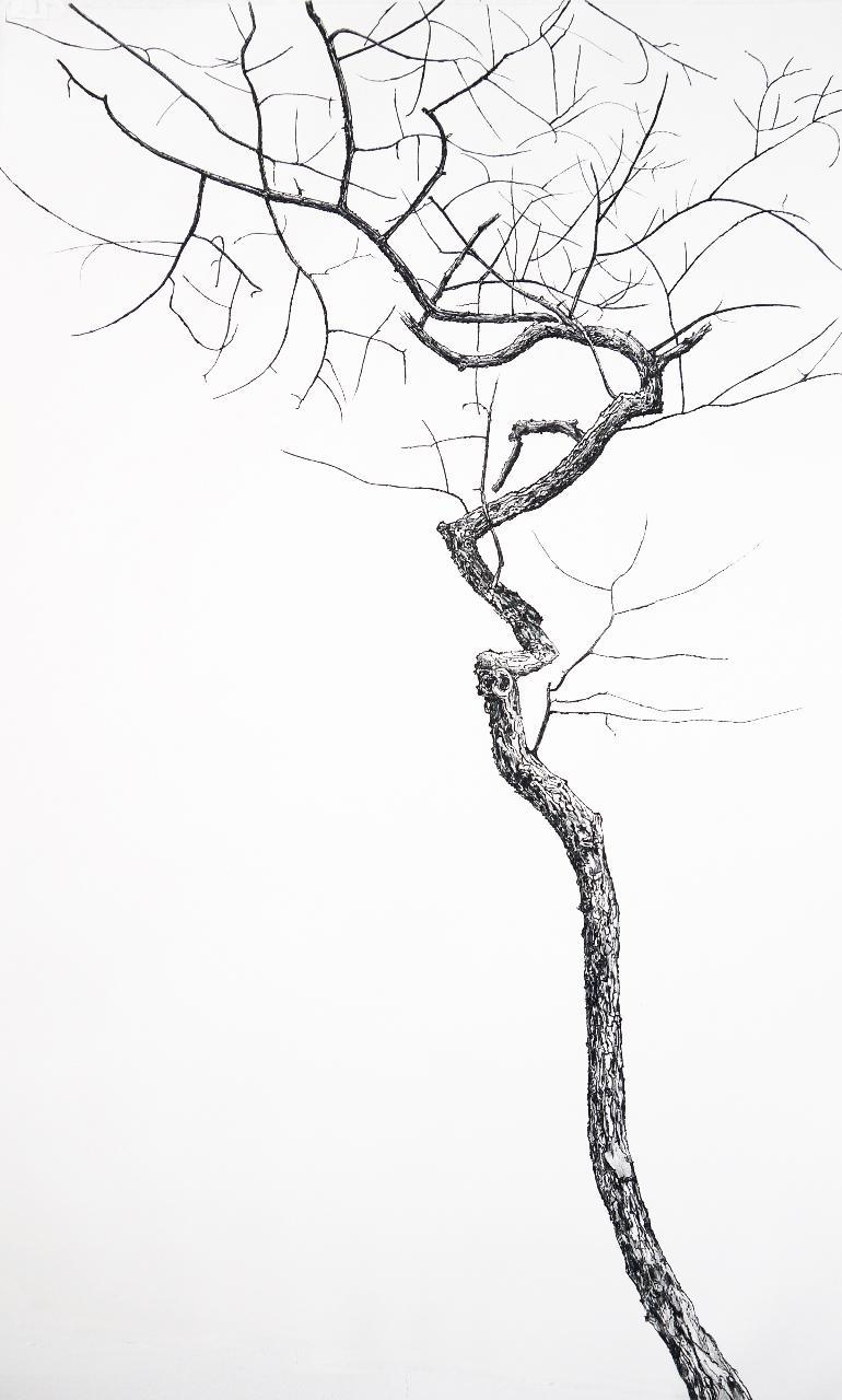 770x1280 Phyllis Fannin, Still Finding My Way, Still Standing Suite, 2013