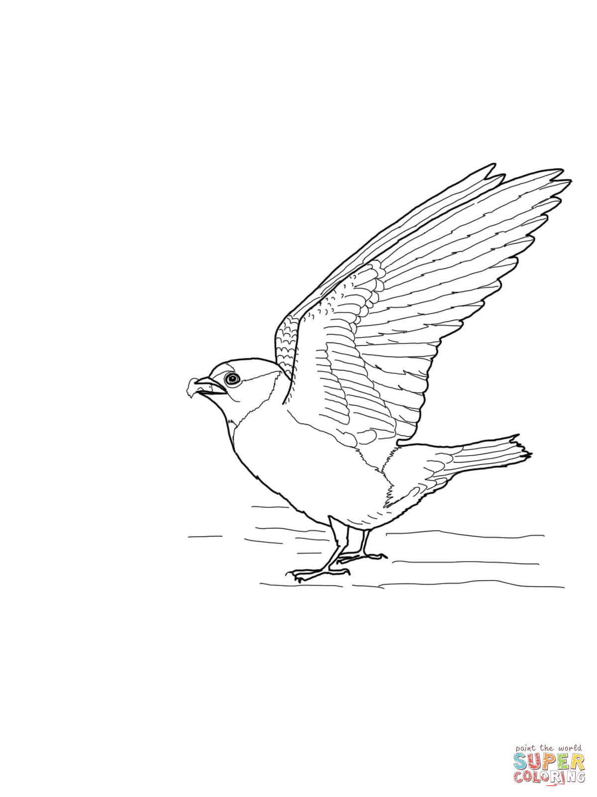 1200x1600 Cliff Swallow Coloring Page Free Printable Coloring Pages
