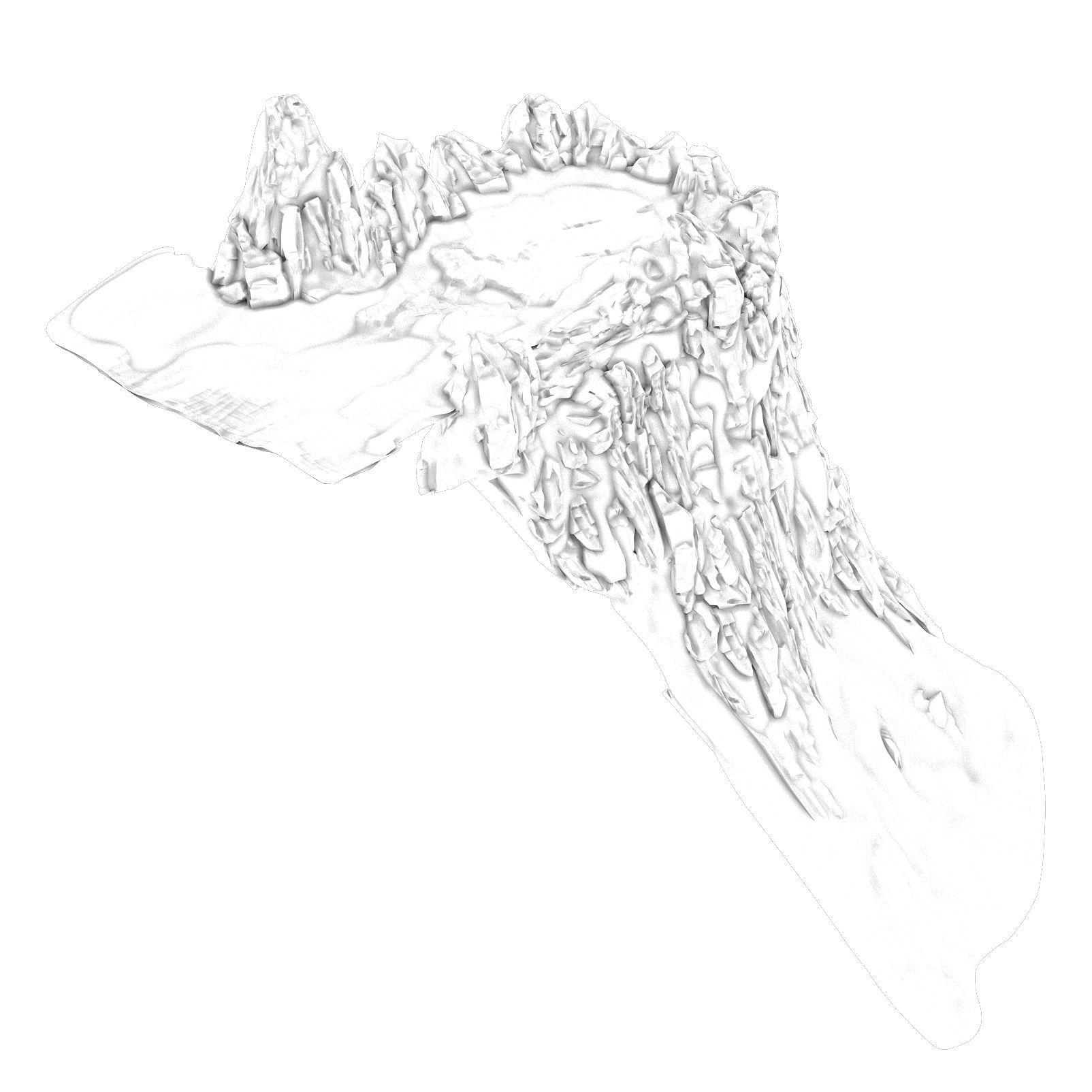 1604x1604 3d Model White Camel Mountain