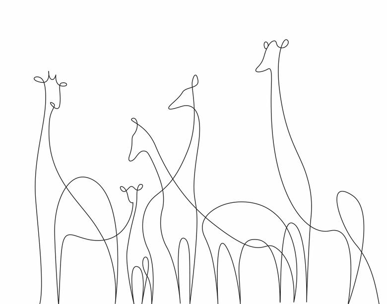 780x613 Ilustrando Animais Com Apenas Uma Linha Drawings, Tattoo And Doodles